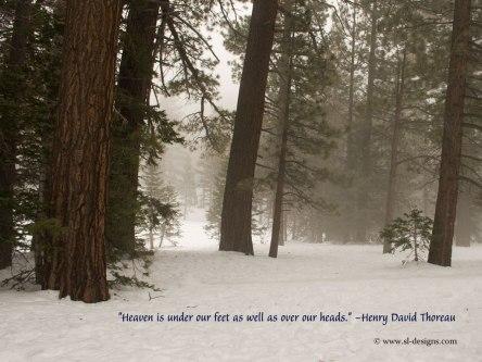 quotes-nature1